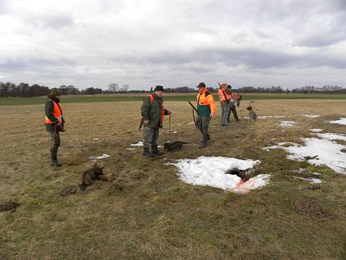 jager jagt op prairie wolven
